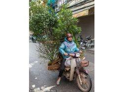 Въетнамские девушки фото