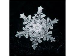 Макро фото снежинки