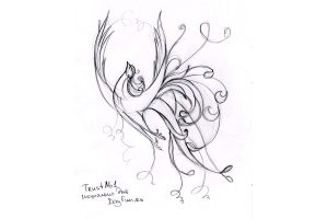 Птицы рисунки карандашом 8