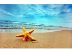 Фото лето море пляж песок 7