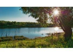 Фото лето природа скачать бесплатно 7