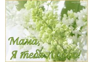 Мама я люблю тебя картинки 2