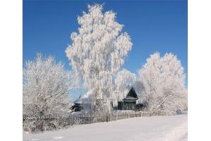 Снег и лед в природе фото 2