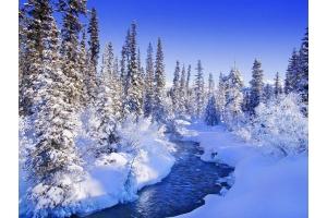 Снег и лед в природе фото 3