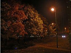 Осень город фото 7