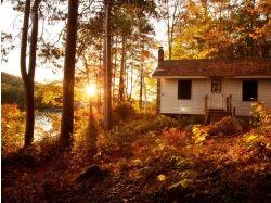 Природа картинки домик в лесу