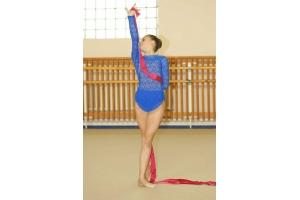 Фото художественная гимнастика 5