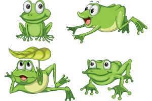 Лягушка картинки 8