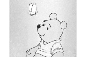 Рисунки карандашом красивые 2