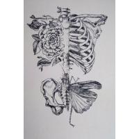 Рисунки карандашом красивые 8