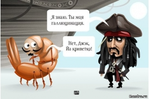 Картинки пираты карибского моря 8