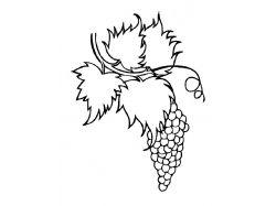 Виноград - раскраски для детей 7