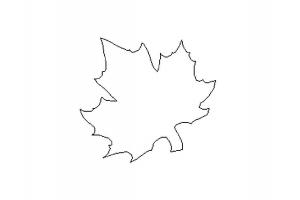 Рисунок кленовый лист