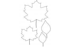 Рисунок кленовый лист 2