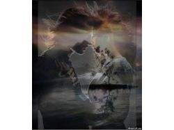 Картинки романтика природа 7