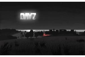 Картинки dayz 5