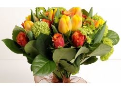 Картинки красивые розы, тюльпаны 7