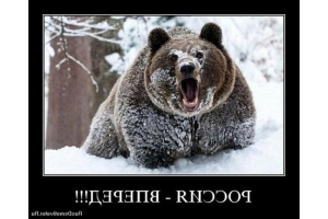 Картинки я русский 5