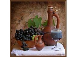 Вино + и фрукты фото