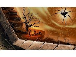 Хэллоуин картинки ведьмы 7