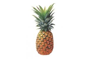 Картинки ананас 6