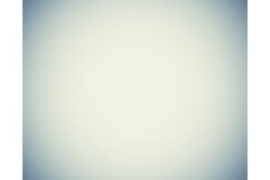 Фото белый лист 2