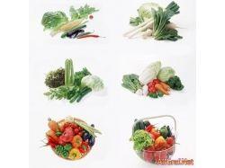 Клипарт - овощи фотошоп depositfiles