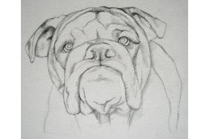 Рисунки карандашом любовь 2