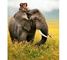 Картинки слоники 6