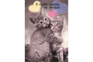 Бесплатно смотреть картинки про любовь 7