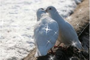 Бесплатно смотреть картинки про любовь 8