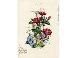 Картинки цветы ретро 7