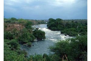 Река нил фото 2