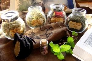 Лекарственные травы башкирии 1