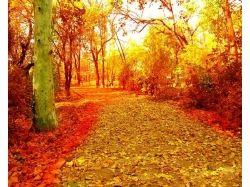 Золотая осень рисунки фото