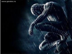 Человек-паук мультик картинки обои 7