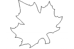 Шаблон кленовый лист 6