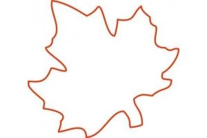 Шаблон кленовый лист 7