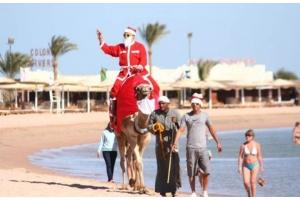 Новый год в египте фото 3