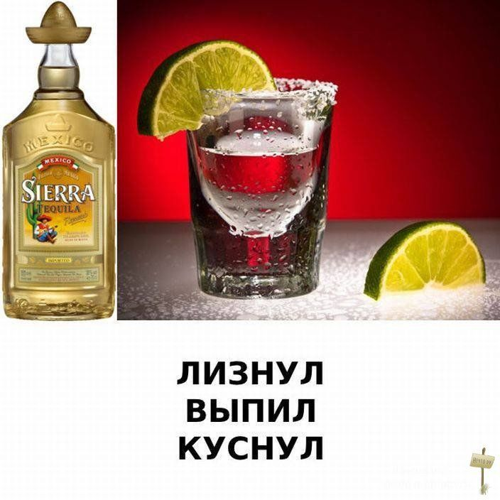 Надписью, открытки приколы с алкоголем