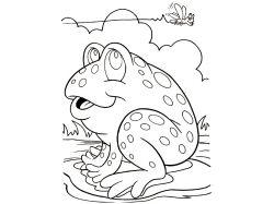 Лягушка-бык - раскраски для детей 7
