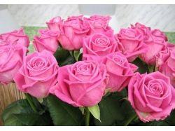 Цветы для открытки с днем рождения