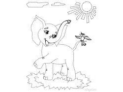 Серая куропатка - раскраски для детей