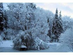 Времена года зима картинки 7
