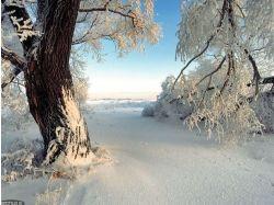 Картинки зима 2014