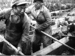 Белорусский кинематограф в довоенный период