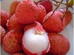 Экзотические фрукты фото и описание