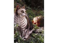 Фото кошки арт