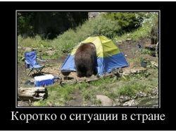 Свежие демотиваторы про украину 7