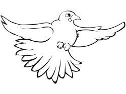 Великолепная райская птица - раскраски для детей 1